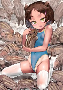 Rating: Questionable Score: 2 Tags: 1girl :d absurdres animal_ears blush breasts brown_hair cleft_of_venus groin hair_ornament hairclip highres hug kneehighs looking_at_viewer navel one-piece_swimsuit one-piece_tan open_mouth original pig pig_ears sasahara_yuuki short_hair small_breasts smile solo swimsuit tan tanline teeth thighhighs white_legwear yellow_eyes User: DMSchmidt