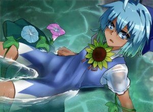 Rating: Safe Score: 0 Tags: 1girl ahoge blue_dress blue_eyes blue_hair blush brown_skin cirno dress flower hair_ribbon hidden_star_in_four_seasons looking_at_viewer manekinekoppoi_inu open_mouth partially_submerged plant puffy_sleeves ribbon short_hair short_sleeves solo sunflower tan touhou_project vines water wet wet_clothes User: DMSchmidt