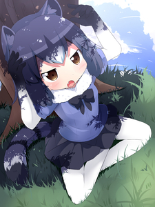 Rating: Safe Score: 0 Tags: 10s 1girl :o animal_ears arms_up black_bow black_bowtie black_hair black_skirt blue_sky bow bowtie brown_eyes cloud common_raccoon_(kemono_friends) day fang fur_collar gloves grass highres indian_style kemono_friends makuran multicolored_clothes multicoloured multicoloured_gloves multicoloured_hair outdoors pantyhose raccoon_ears raccoon_tail short_hair sitting skirt sky solo striped_tail tail tree under_tree white_hair white_legwear User: Domestic_Importer