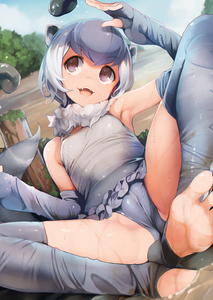 Rating: Safe Score: 16 Tags: 1girl :3 :d arm_up armpits ataruman breasts cameltoe dutch_angle elbow_gloves eyebrows_visible_through_hair fang feet fingerless_gloves frill_trim gloves grey_eyes grey_gloves grey_hair grey_legwear grey_swimsuit highres kemono_friends leotard looking_away lying one-piece_swimsuit open_mouth outdoors short_hair small-clawed_otter_(kemono_friends) small_breasts smile soles solo swimsuit thighhighs toeless_legwear toes wet User: Domestic_Importer