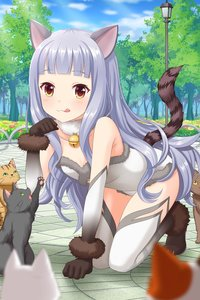 Rating: Safe Score: 1 Tags: 1girl :3 alternative_girls animal_ears arm_support bangs bare_shoulders bell bell_collar black_cat blunt_bangs blush breasts cat cat_ears cat_girl cat_tail cleavage collar collarbone day elbow_gloves fur-trimmed_gloves fur-trimmed_leotard fur_collar fur_trim gloves grey_gloves grey_hair grey_legwear highres hiiragi_tsumugi jingle_bell kneeling leotard long_hair looking_at_viewer official_art orange_eyes outdoors paw_pose small_breasts smile tail thighhighs tongue tongue_out tree wavy_hair white_legwear white_leotard User: DMSchmidt