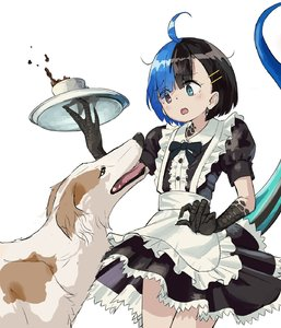 Rating: Safe Score: 1 Tags: 1girl :o alternate_costume apron black_dress black_eyes black_hair black_neckwear blue_eyes blue_hair bow bowtie claws cup dog dog_request dress enmaided eyebrows_visible_through_hair hair_ornament hairclip heterochromia highres holding kamemaru looking_down maid maid_apron monster_girl multicoloured_hair original puffy_short_sleeves puffy_sleeves scared short_hair short_sleeves spilling standing tail teacup tray two-tone_hair waist_apron wakao_ruri white_apron User: DMSchmidt