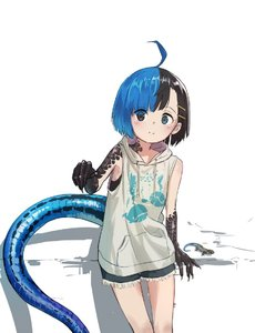 Rating: Safe Score: 1 Tags: 1girl ahoge bare_arms bare_shoulders black_eyes black_hair blue_eyes blue_hair blush claws closed_mouth cowboy_shot eyes_visible_through_hair hair_ornament hairclip heterochromia hood hood_down hoodie japanese_skink kamemaru lizard lizard_girl lizard_tail looking_at_viewer monster_girl multicoloured_hair original short_hair short_shorts shorts sleeveless sleeveless_hoodie smile solo standing tail two-tone_hair wakao_ruri User: DMSchmidt