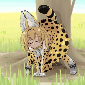 Rating: Questionable Score: 8 Tags: 1girl all_fours animal_ears artist_request blonde_hair bowtie closed_eyes elbow_gloves gloves grass kemono_friends medium_breasts open_mouth outdoors pee peeing serval_(kemono_friends) serval_ears serval_print serval_tail shoes short_hair skirt solo tail tree User: DMSchmidt