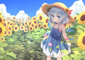 Rating: Safe Score: 0 Tags: 1girl adapted_costume bare_arms bare_shoulders blue_dress blue_eyes blue_hair blue_sky blurry blush cirno cloud collarbone day depth_of_field dress eyebrows_visible_through_hair field flat_chest flower flower_field food hat hat_flower hat_ribbon ice ice_cream ice_wings kibisake melting morning_glory mouth_hold outdoors red_ribbon ribbon short_hair skirt_hold sky sleeveless sleeveless_dress solo standing straw_hat sun_hat sunflower tanned_cirno touhou_project wings User: DMSchmidt